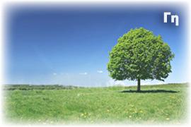 Γη - Οικόπεδο, Έκταση, Αντιπαροχή